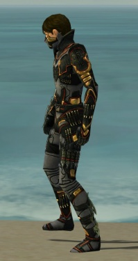 Assassin Elite Kurzick Armor M gray side.jpg