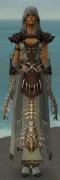 Dervish Primeval Armor F gray front.jpg