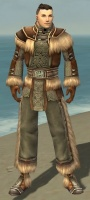 Monk Norn Armor M gray front.jpg