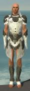 Paragon Elonian Armor M gray front.jpg