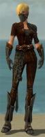 Ranger Istani Armor F gray front.jpg