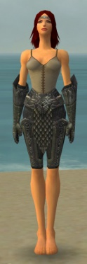 Warrior Elite Platemail Armor F gray arms legs front.jpg