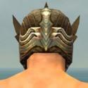 Warrior Monument Armor M gray head back.jpg