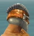 Warrior Templar Armor M dyed head side.jpg