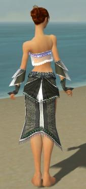 Elementalist Elite Luxon Armor F gray arms legs back.jpg
