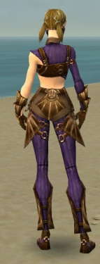 Ranger Sunspear Armor F dyed back.jpg