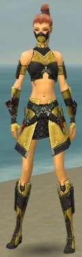 Assassin Elite Canthan Armor F dyed front.jpg