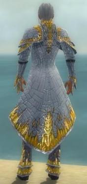 Elementalist Elite Iceforged Armor M dyed back.jpg