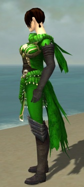 Ravenheart Witchwear F dyed side.jpg