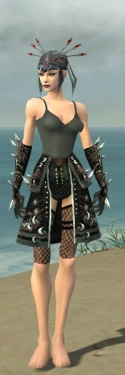 Necromancer Elite Canthan Armor F gray arms legs front.jpg