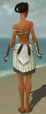 Paragon Ancient Armor F gray arms legs back.jpg