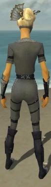 Assassin Shing Jea Armor F gray back.jpg