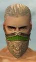Ranger Asuran Armor M dyed head front.jpg