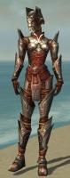 Warrior Asuran Armor F gray front.jpg