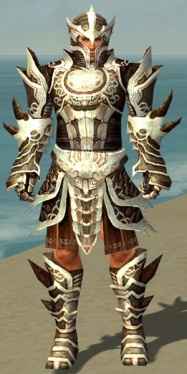 Warrior Monument Armor M dyed front.jpg