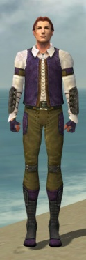 Mesmer Ascalon Armor M dyed front.jpg