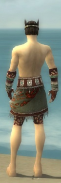 Ritualist Elite Exotic Armor M gray arms legs back.jpg
