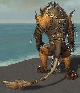 Pyre Fierceshot Armor Deldrimor Back.jpg