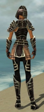 Warrior Ancient Armor F gray back.jpg