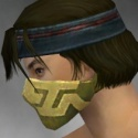 Assassin Canthan Armor M dyed head side.jpg