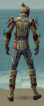 Assassin Monument Armor M gray back.jpg