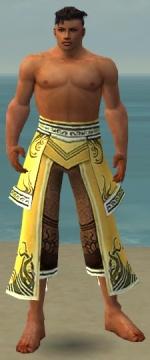 Aureate Pants M dyed front.jpg