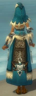 Dervish Norn Armor F dyed back.jpg