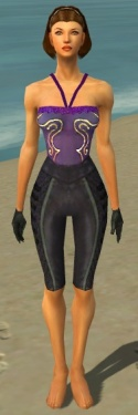 Mesmer Elite Rogue Armor F gray arms legs front.jpg