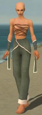Monk Ascalon Armor F gray arms legs front.jpg