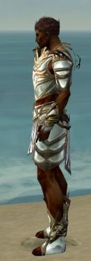 Paragon Primeval Armor M dyed side.jpg