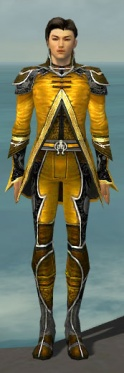 Elementalist Shing Jea Armor M dyed front.jpg