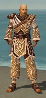 Monk Canthan Armor M dyed front.jpg