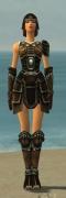 Warrior Shing Jea Armor F gray front.jpg