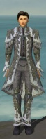 Elementalist Iceforged Armor M gray front.jpg
