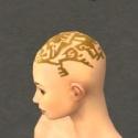 Monk Elite Sunspear Armor F dyed head side.jpg