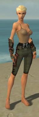 Ranger Obsidian Armor F gray arms legs front.jpg