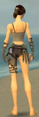 Warrior Elite Gladiator Armor F gray arms legs back.jpg