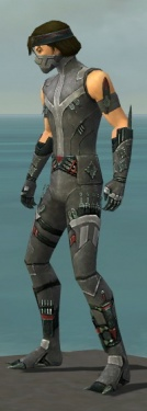 Assassin Canthan Armor M gray side.jpg