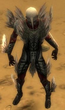 Necromancer Primeval Armor M gray front.jpg