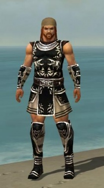 Warrior Istani Armor M nohelmet.jpg