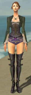 Mesmer Rogue Armor F gray chest feet front.jpg