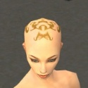 Monk Ancient Armor F dyed head front.jpg