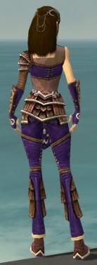 Ranger Shing Jea Armor F dyed back.jpg