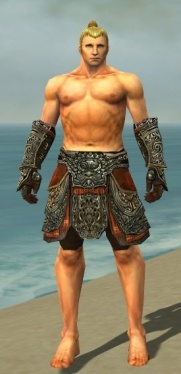 Warrior Elite Canthan Armor M gray arms legs front.jpg