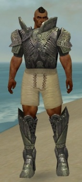 Warrior Elite Platemail Armor M gray chest feet front.jpg