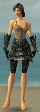 Warrior Wyvern Armor F gray arms legs front.jpg