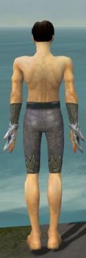 Elementalist Iceforged Armor M gray arms legs back.jpg