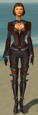 Mesmer Elite Rogue Armor F dyed front.jpg