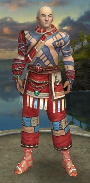 Monk Luxon Armor M dyed front.jpg