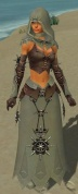 Dervish Elite Sunspear Armor F gray front.jpg